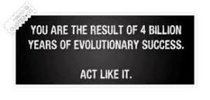 evolve13