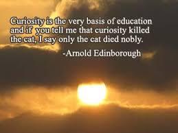 Curiousity10