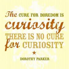 curiousity4