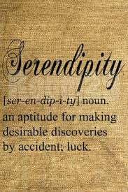 Serendipity5