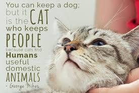 Pets14