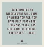 Surrender1
