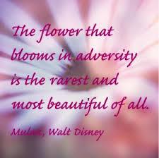Adversity14