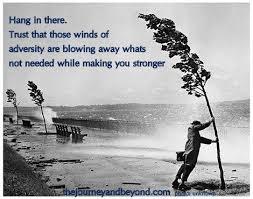 Adversity5