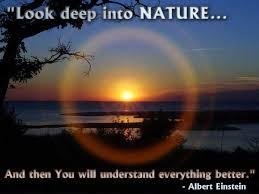 nature5