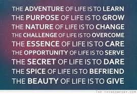 purpose11
