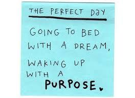 purpose6