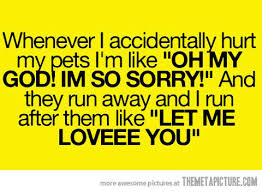 pets 10