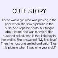 stories7