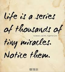 miracle15