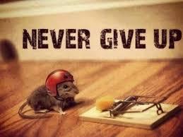 Motivate14