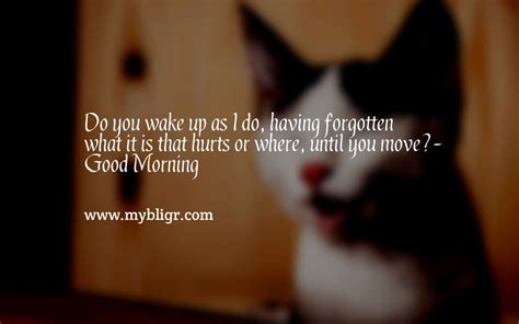 morn14.jpeg